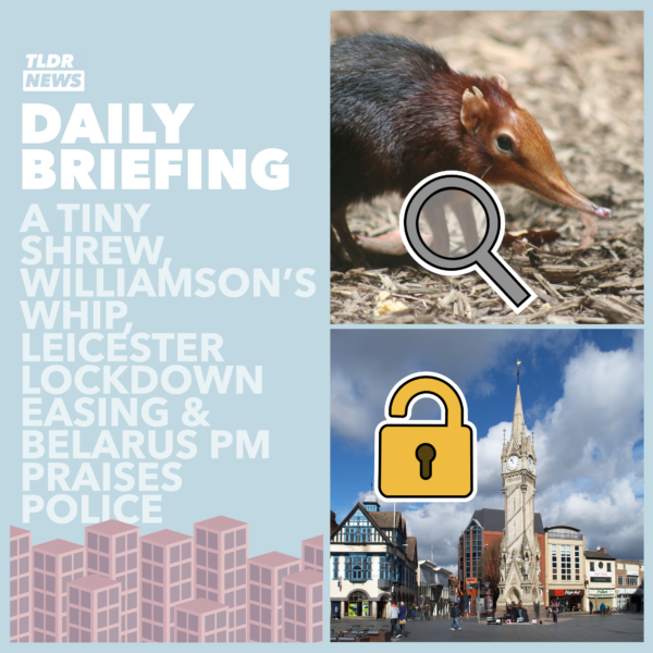 August 18th: The Tiny Elephant Shrew, Williamson's Whip and the Leicester Lockdown 3