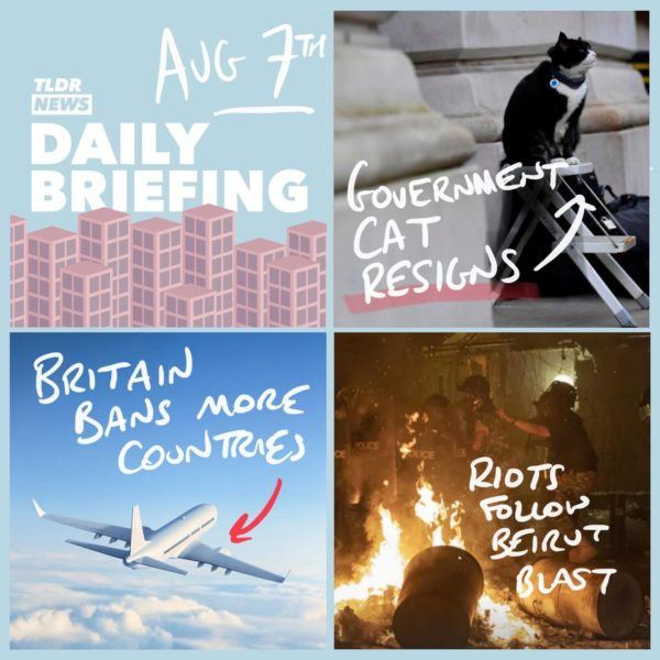 August 7th: The Treasury Cat, Quarantined Countries and the Beirut Fallout