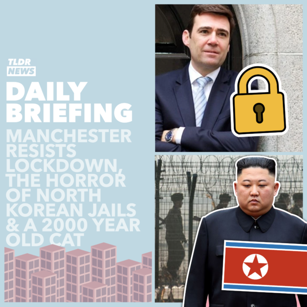 October 19th: A 2,000 Year Old Cat, North-Korean News and a Manchester Stalemate 3