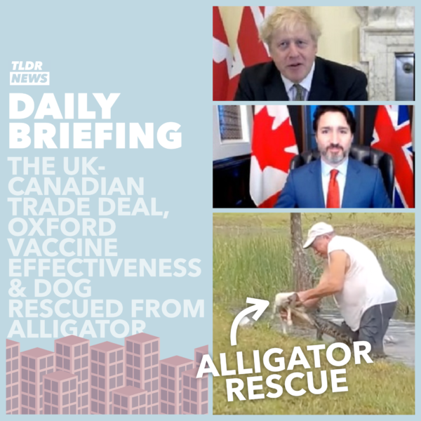 November 23: The UK-Canadian Trade Deal, The Oxford Vaccine Joins the Race and A Rescued Dog 3