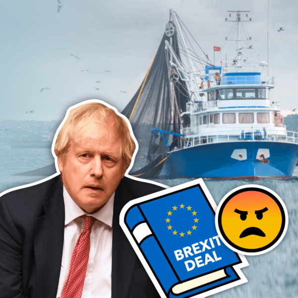 Did Johnson Betray the Fishing Industry: What the Brexit Deal Means for British Fish