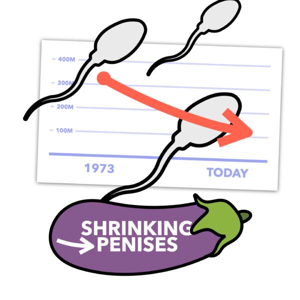 Why is Global Fertility Falling & Penises Shrinking?