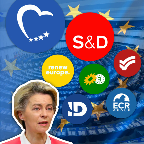 EVERY EU Political Grouping Explained: What Do They Stand For